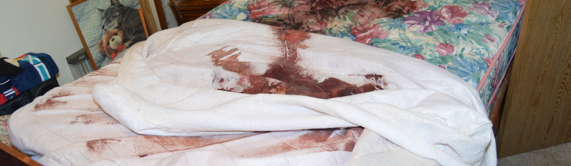 Blood stains on mattress after a suicide, but